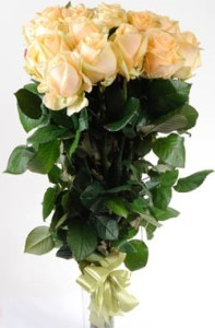 Peach roses in Ukraine delivery