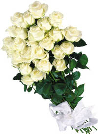 White roses delivery Ukraine